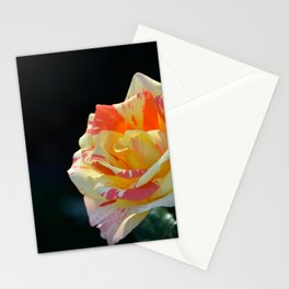 Autumn Rose by Teresa Thompson Stationery Cards