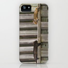 Squirrels Chilling iPhone Case