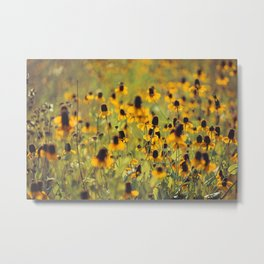 Yellow Hat Dance -- Dreamy Botanical Landscape Mexican Hat Coneflowers Afield Metal Print