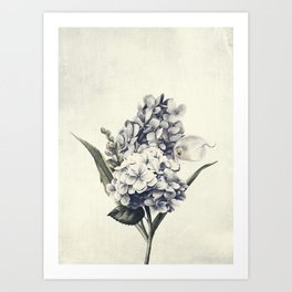 Flowers near me 6 Art Print