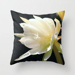flower Königin der Nacht Throw Pillow