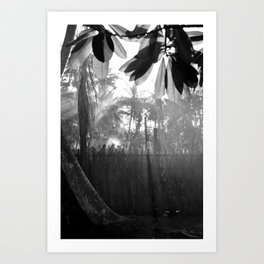 Morning Mist Maldives Art Print