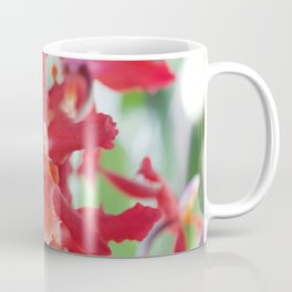 Exquisite Epidendrum Orchids Coffee Mug