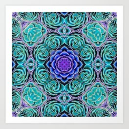 Echeveria Bliss Art Print