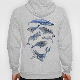Whales, Whale design, whale wall art, sea, marine aquatic animal art, school learning wall Hoody