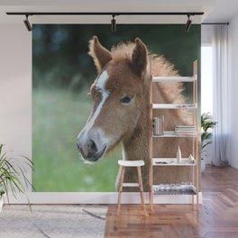 Aqua_Horse_20180101_by_JAMColorsSpecial Wall Mural