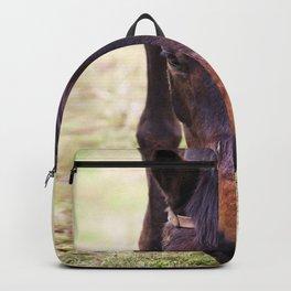 Watercolor Horse 60, Morven Park, Virginia, Such a Long Face Backpack