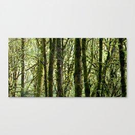 Wildwood Canvas Print