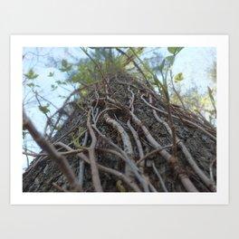 Those Roots Go Deep Art Print