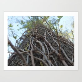 Those Roots Go Deep Art Print