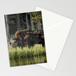 Morning kiss and (brown) bear hug Stationery Cards