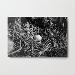 The Nest Metal Print