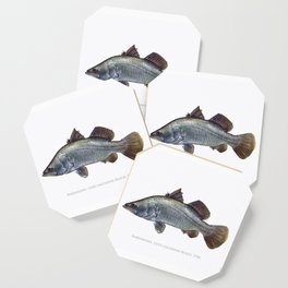 Barramundi Coaster