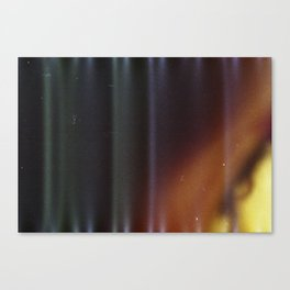 Sensitive to Light Canvas Print