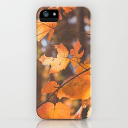 red autumn leaves iPhone Case
