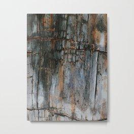 Crack On Nature (ll) Metal Print