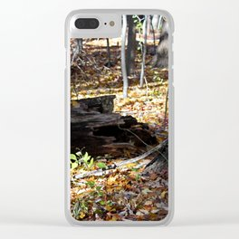 Storyteller Clear iPhone Case