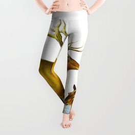 Elk Vintage Scientific Animal Illustration Leggings