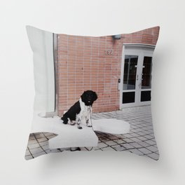 No. 7 Throw Pillow