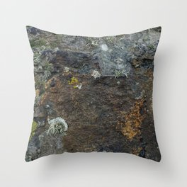 Natural Coastal Rock Texture with Lichen and Moss Throw Pillow