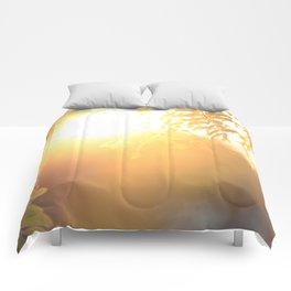 Sun Soak Comforters