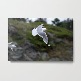 Take a sweep  Metal Print