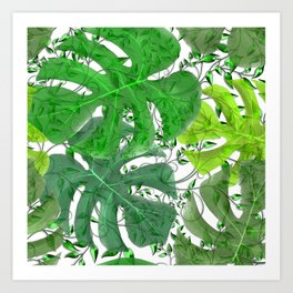 PALM LEAF B0UNTY GREEN AND WHITE Art Print