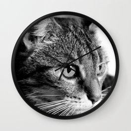 cat look Wall Clock