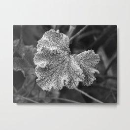 Frozen Leaf Metal Print