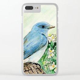 Idaho Clear iPhone Case