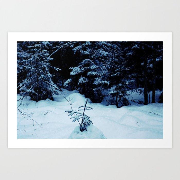 Mid-Winter Art Print
