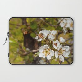 Bartlett Pear Blossoms & Bee Laptop Sleeve