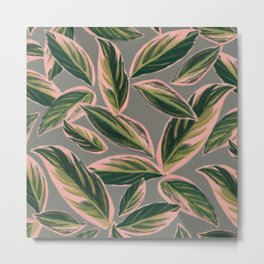 Calathea Leaves Pattern- Pink Green Gray Metal Print