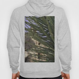 Joshua Tree Layers Hoody