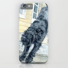 Stretching Black Labradoodle Slim Case iPhone 6s