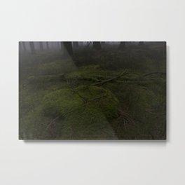 Zauberwald - Fog in the Magic Forest 2 Metal Print