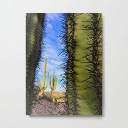 Saguaro Cactus, Arizona Metal Print