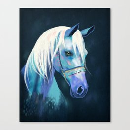 Beautiful Arabian Horse Canvas Print