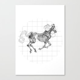 Zoopraxiscope Canvas Print