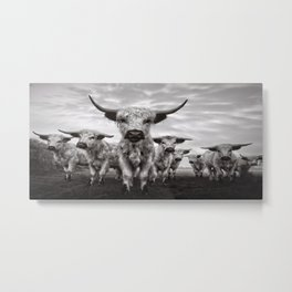 Highland Cattle Mixed Breed Mono Metal Print