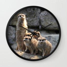 Meerkat 2014-0902 Wall Clock