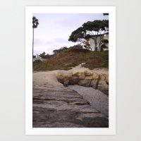 Backyard California Art Print