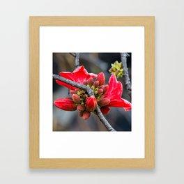 Sticky Framed Art Print