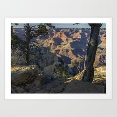 The Grand Canyon and Trees. Art Print