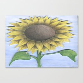 Stacy's Sunflower Canvas Print