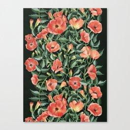 Campsis love Canvas Print
