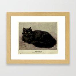 Vintage Painting of a Black Cat (1903) Framed Art Print