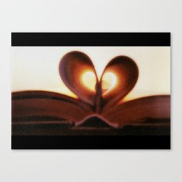 Love Book Canvas Print