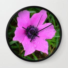 Purple Anemone - Anemone Coronaria Flower Wall Clock