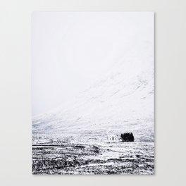 White House Canvas Print